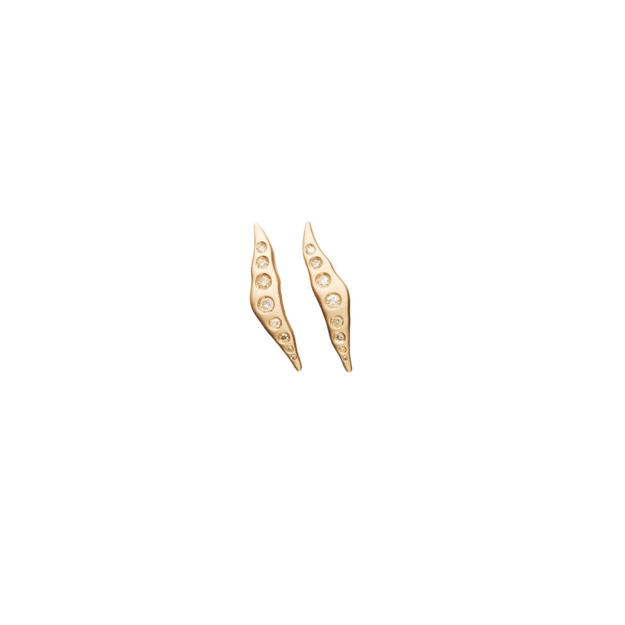 EAR-143911
